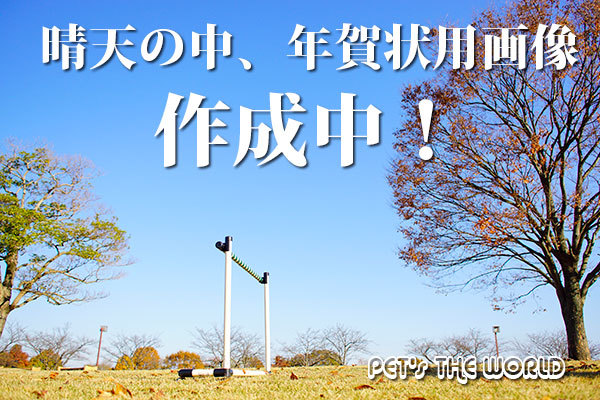 2017-12-02-05.jpg