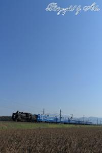 9243レ「SL北びわこ3号」(=C56-160牽引)