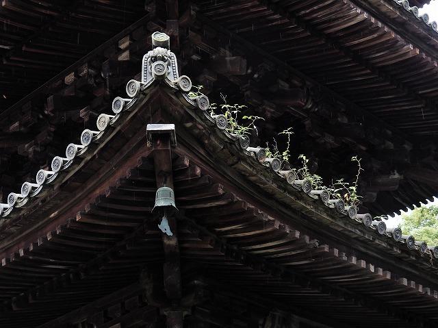三井寺15