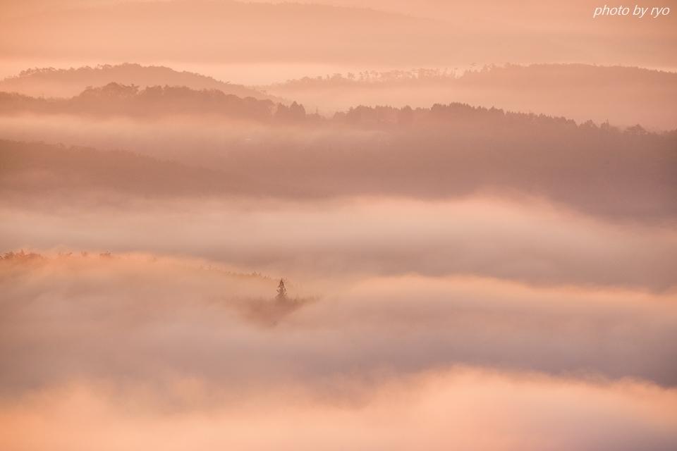 霧の低い朝に_5