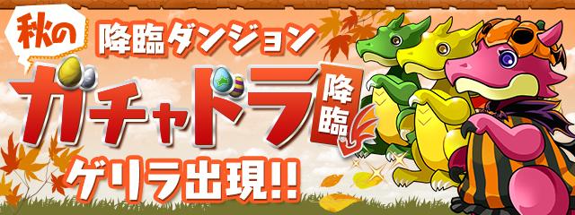 【パズドラ】秋のガチャドラ降臨をディノ装備、覚醒ラファエルでマルチ周回!