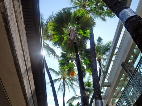 ハワイ008ホノルル空港