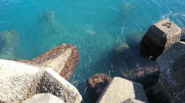 海 波消しブロック