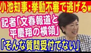 ⑧吉永小百合さんからのお願い憲法9条を守って!憲法に自衛隊を書き込むと未必の故意殺人みたいになるんじゃないの!即決銃殺刑も適用されそう!