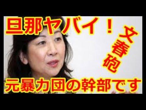 ⑨吉永小百合さんからのお願い憲法9条を守って!憲法に自衛隊を書き込むと未必の故意殺人みたいになるんじゃないの!即決銃殺刑も適用されそう!