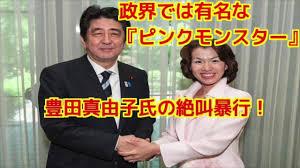 ⑩【CSIS】ウン小池もウン小泉進も豊田真由ウン子もマイケル・グリーン友の会構成員!