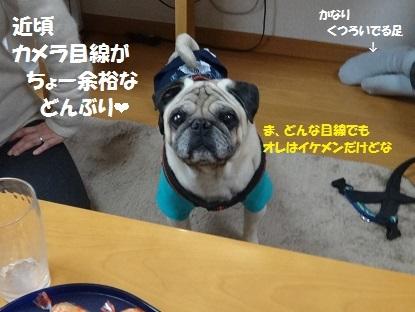 201404nono3.jpg