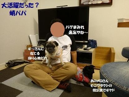 201210ばんパグ2