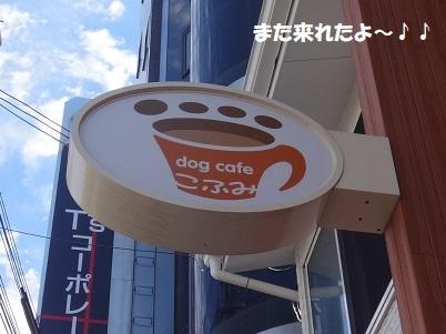 DSC05808 - コピー