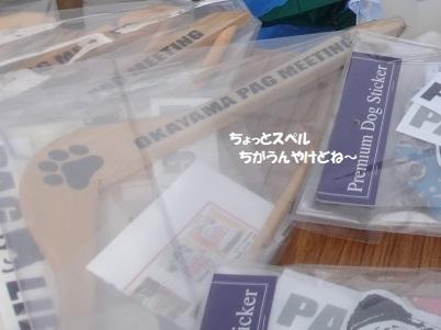 DSC06197 - コピー