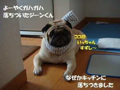 201107②