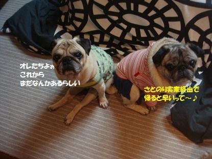 201401えっちゃん家2