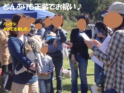 201310東海秋②