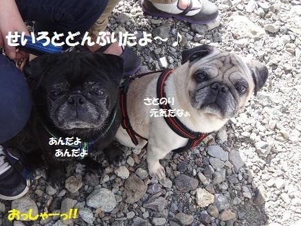 201405サムデイ7