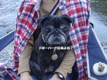201410朝霧9