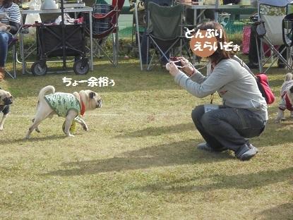 201410朝霧5