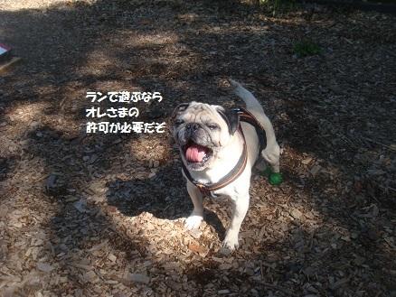 201409軽井沢3