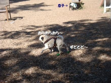 201409軽井沢2