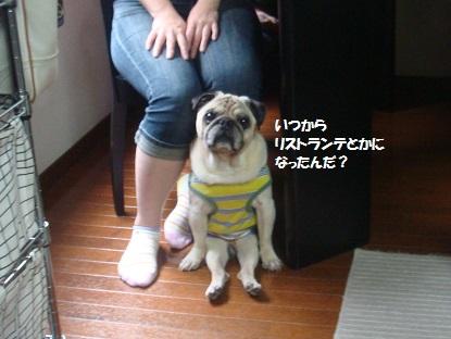 201509えっちゃん家1