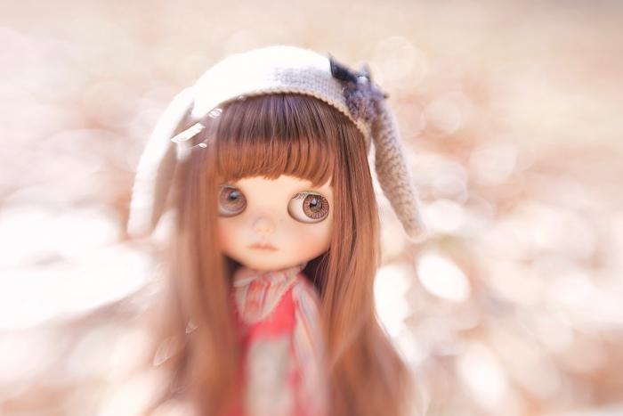 _MG_1581.jpg