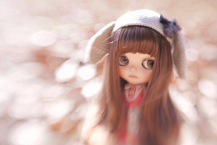 _MG_16042.jpg