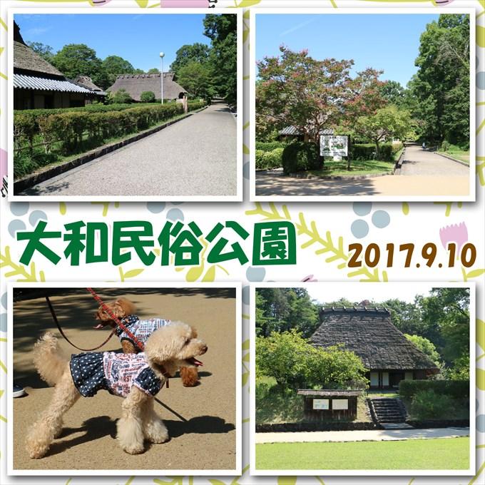 210_20171125200134425.jpg