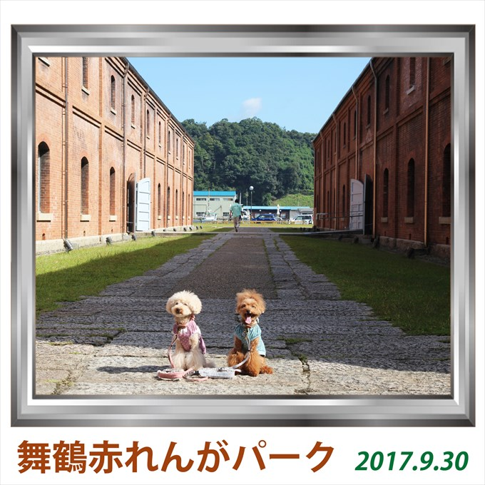 282_20171211210249a08.jpg