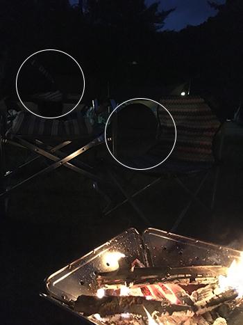 焚き火と黒パグ