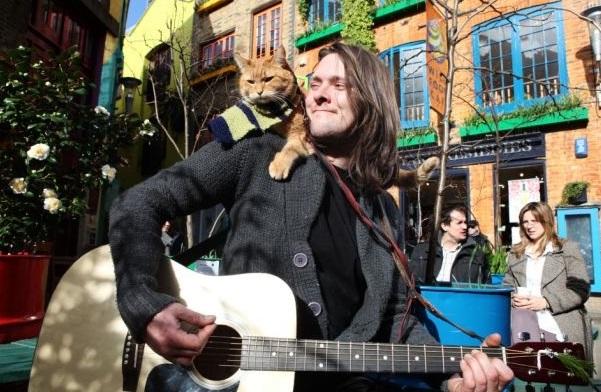 人生のどん底だったホームレスミュージシャンと彼を救った1匹の猫の感動の実話