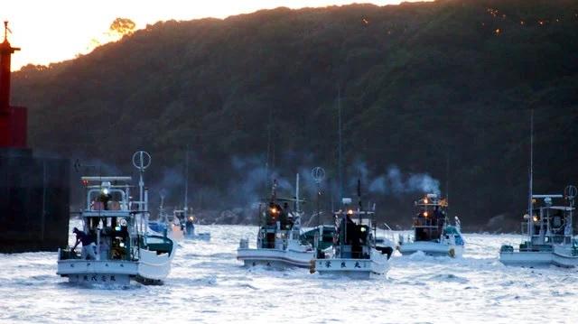 出漁する追い込み漁の船団=1日午前5時20分、和歌山県太地町