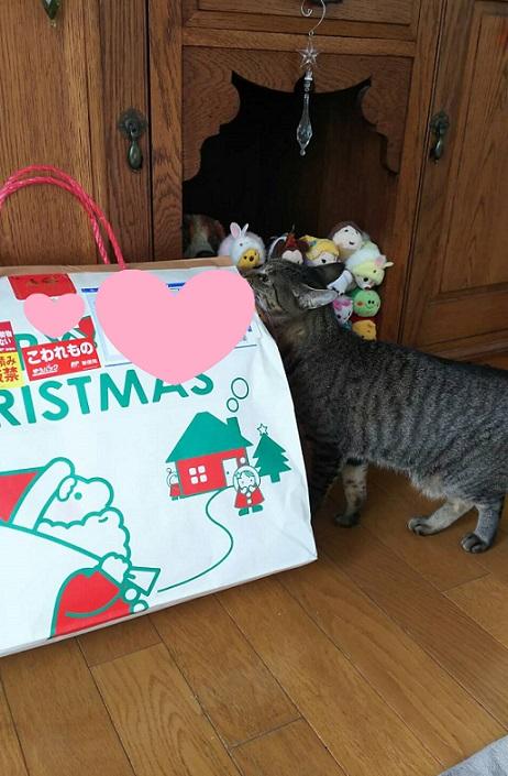 クリスマスりーちゃん3