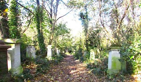 2017-11 墓地2