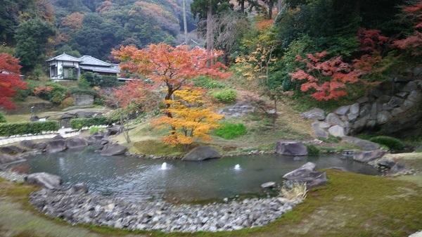 方丈の池の紅葉