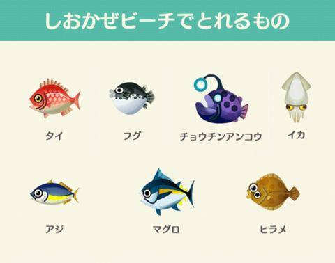 どうぶつ の 森 魚 レア あつまれ 【あつ森】魚の図鑑一覧表(値段・レア度・時間帯・魚影・出現期間・場所)【あつまれどうぶつの森】