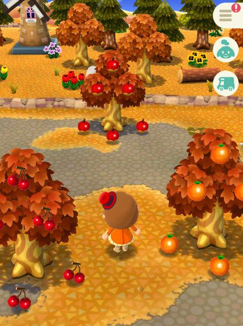 【ポケ森】簡易アイテム倉庫の裏技 もも・なし・オレンジなどフルーツは一時保存が可能【どうぶつの森ポケットキャンプ攻略】