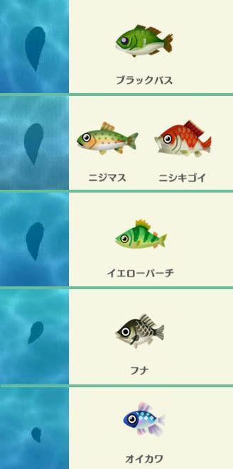 【ポケ森】レア魚「ニシキゴイ」の魚影は大 川で釣れる魚の影の大きさ比較画像【どうぶつの森ポケットキャンプ攻略】