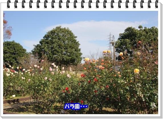 3051ブログNo4