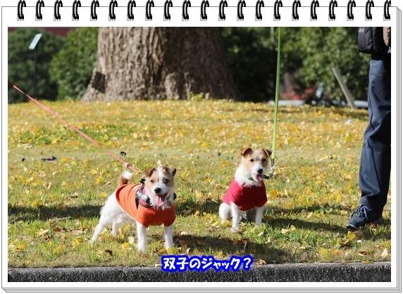 3051ブログNo6