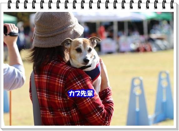 3051ブログNo8