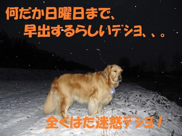 CIMG2841_P.jpg