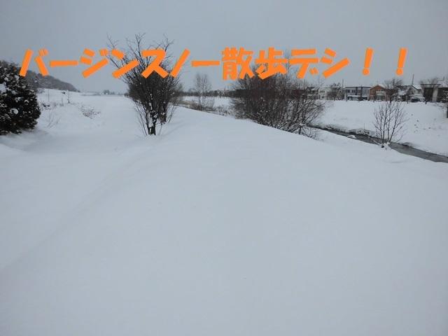 CIMG3015_P.jpg