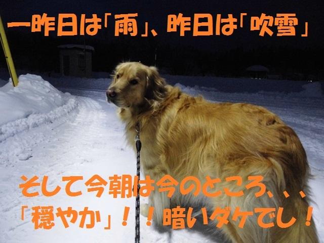 CIMG3059_P.jpg