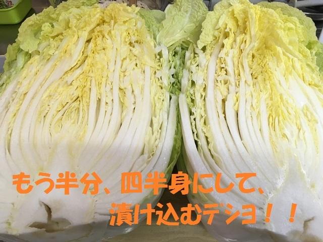 IMG_6949_P.jpg