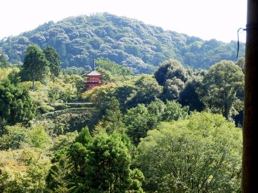 京都 (38)