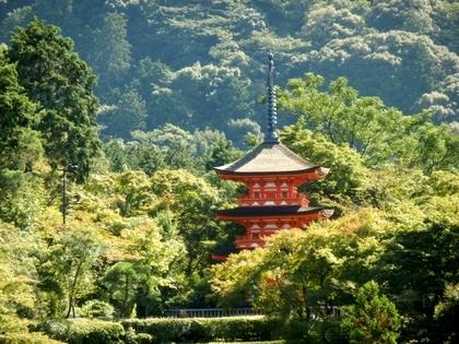 京都 (37)