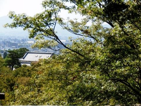 京都 (39)