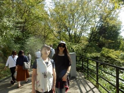 京都 (52)