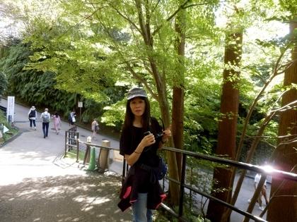 京都 (53)