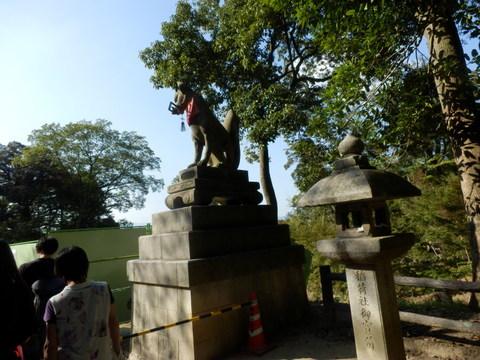 伏見稲荷 (54)