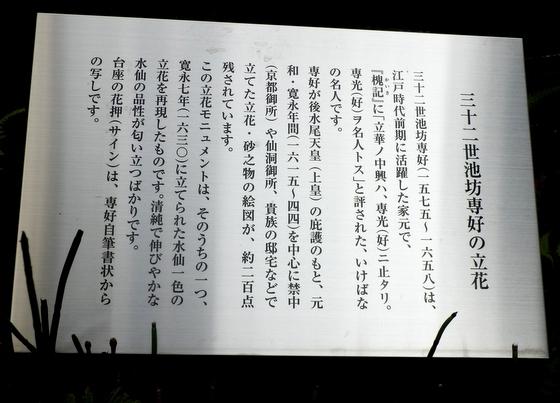 六角堂 (34)